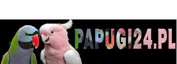 Forum - Papugi24.pl
